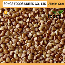 Best Quality Buckwheat Kernel