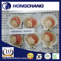 Frozen half shell scallop roe on