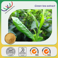 free sample theanine powder HACCP Kosher FDA green tea extract HPLC 20% 30% theanine