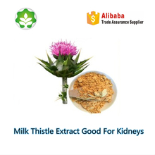milk thistle herbal extract for kidneys silymarin extract