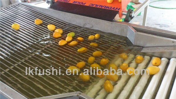 FACTORY OUTLET(FUSHI BRAND) FRUIT&VEGETABLE WASHING AND SORTING MACHINE