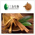 Cinnamon Bark Extract (100% Natural, 3W FACTORY)
