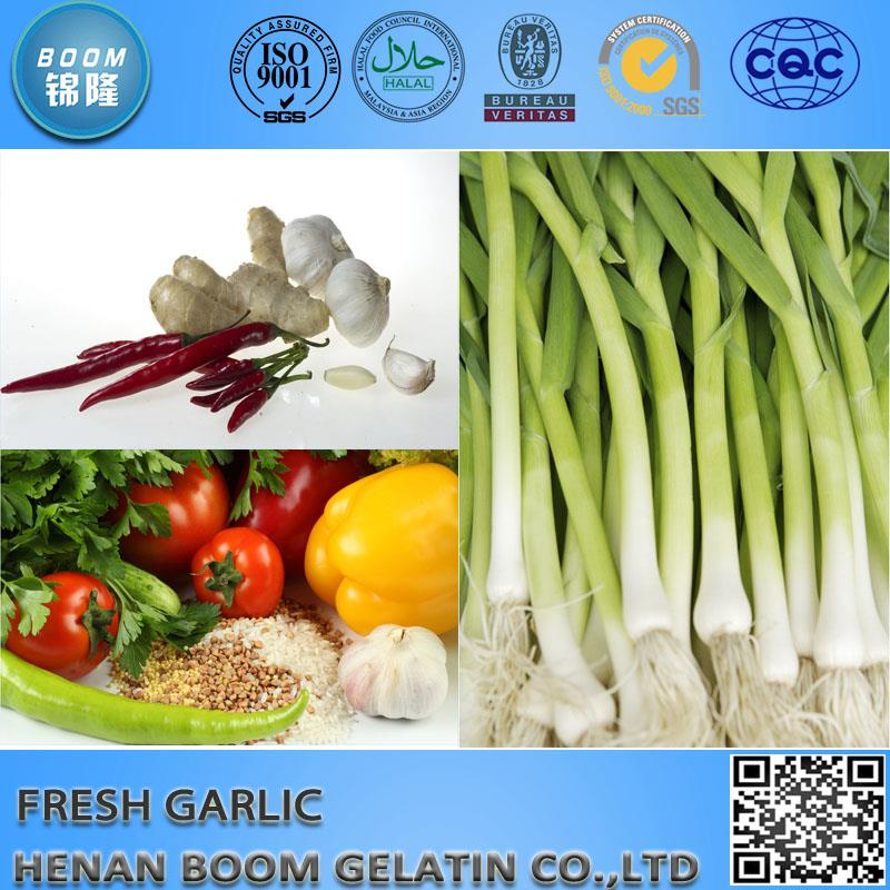 Jinxiang garlic canned garlic sprout