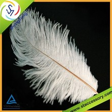 New wholesale ostrich feather cheap