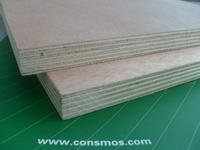 philippine market plywood,4x8 veneer plywood,plastic coated plywood sheet manufacturers