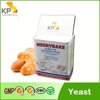 Merrybake feed yeast powder,fresh yeast suppliers