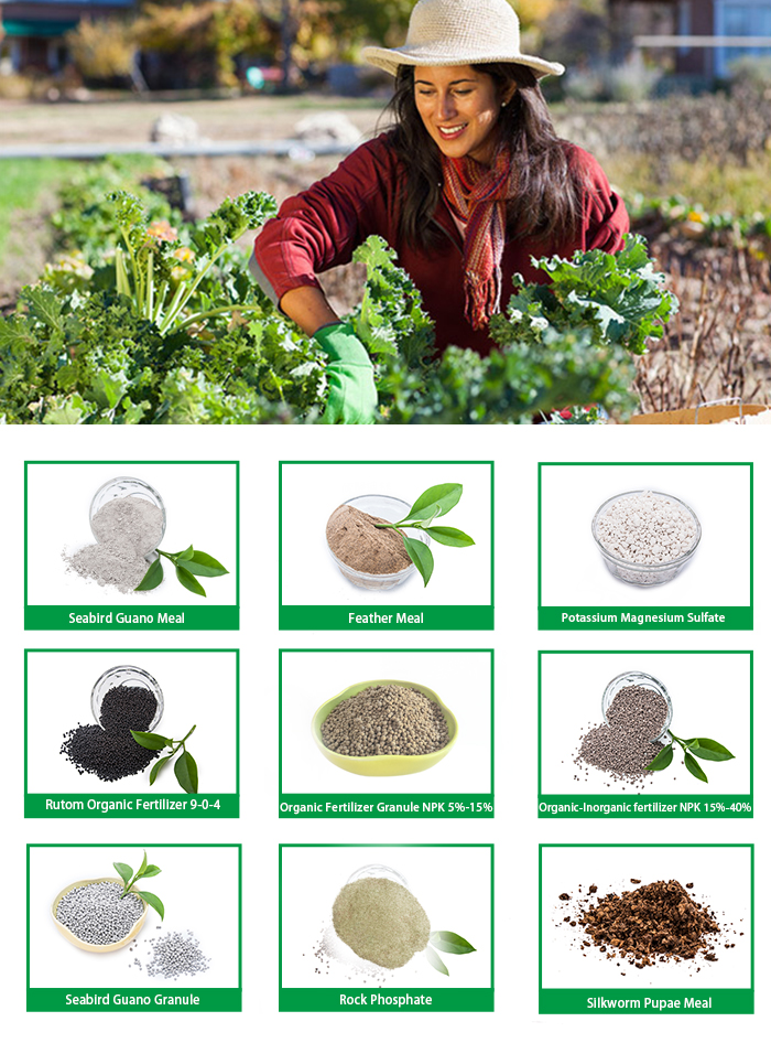 organic fertilizer rich in organic nutrients improving soil structure and resistance to pathogens