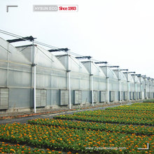 Top quality pep film zigzag greenhouse sawtooth greenhouse