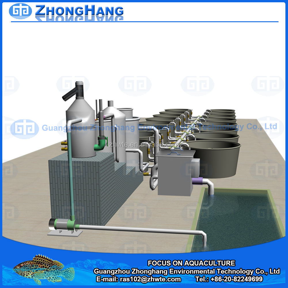 20T/Hr,60T/Hr,100T/Hr fish farming equipment for Recirculating Aquaculture System
