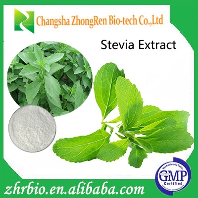 Stevia - GMP Certified Organic Stevia Extract Powder-98%