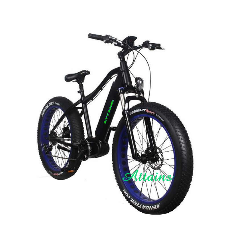 China cheap brushelss motor 1000w 48v fat tire mountain electric bikes for sale