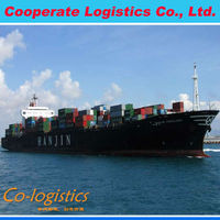 sea freight sea shipping container from Shenzhen to Croatia with warehouse--bony(skype: colsales24)--XTA01