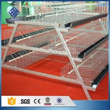 30 Years' factory supply 3 tier automatic battery type breeding chicken cage
