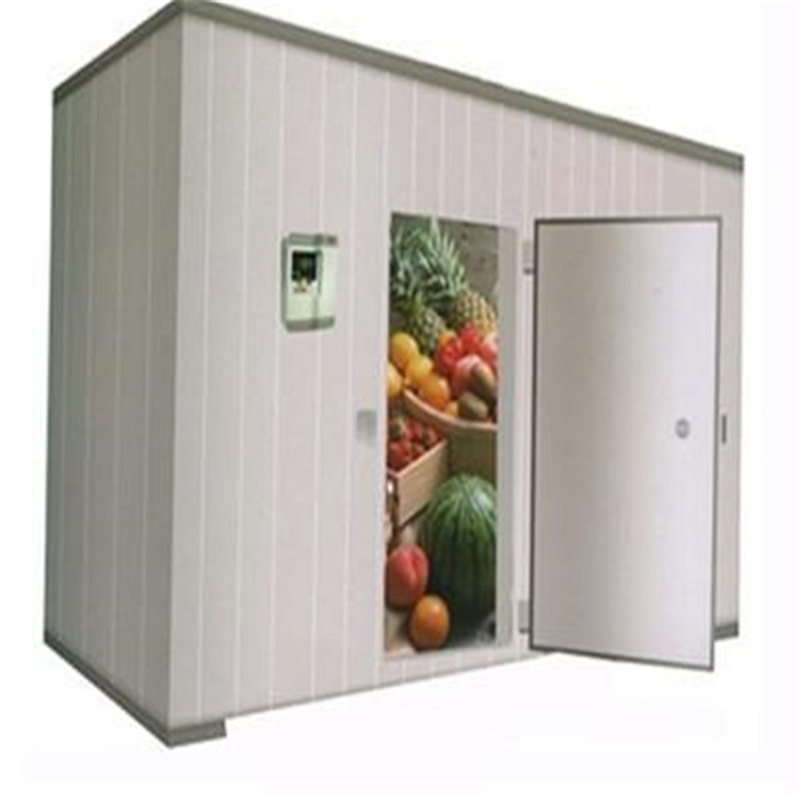 Automatic control high quality assurance fresh-keeping store R404A R22 cold room price