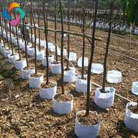 Professional geotextile planting grow tree bags for convenient transplanted