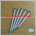Common nail(factory&ISO9001 APPROVED)