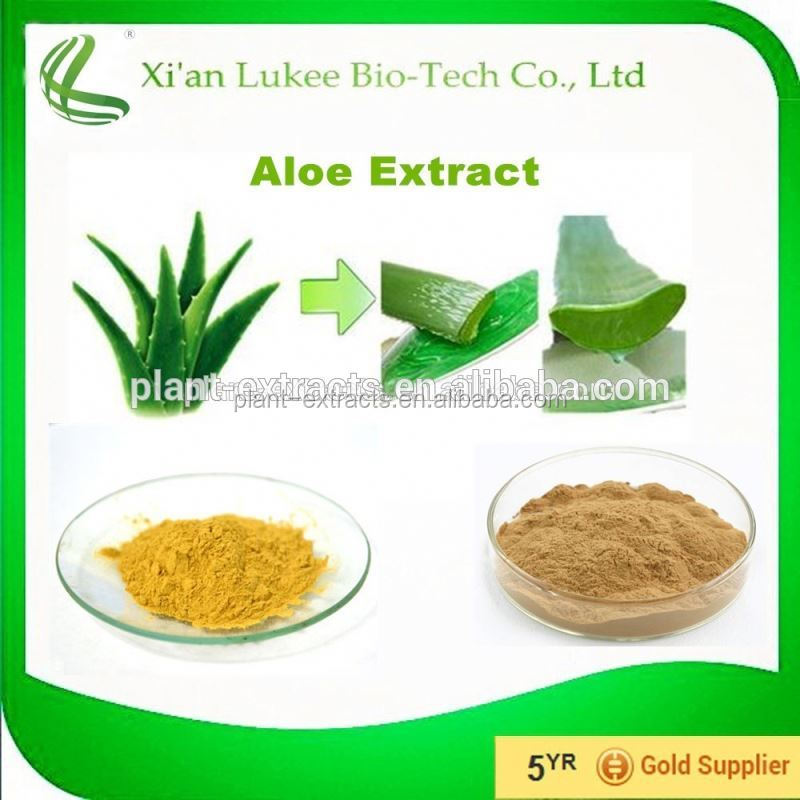 Cosmetic Grade Aloe Vera Extract 10% 20% Aloin/Barbaloin Powder