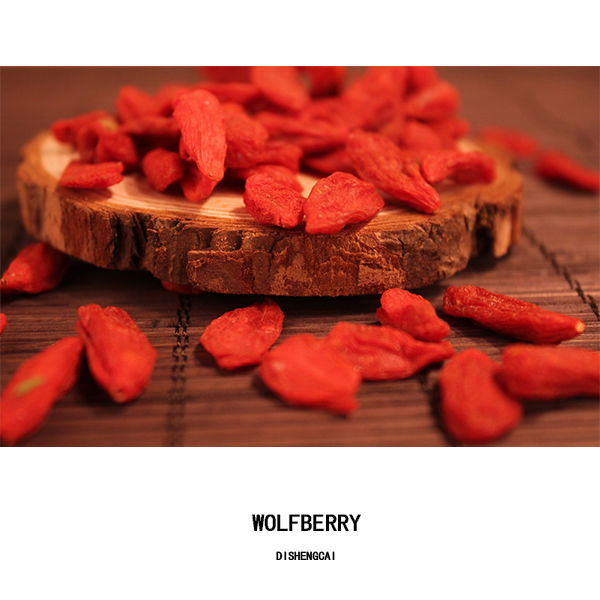 Supply High Quality New Season Bulk Organic Goji Berry
