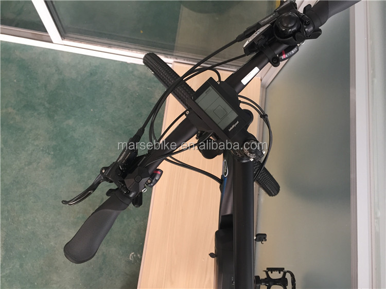 1000W 750W 500W Bafang rear motor 21 speed e bicycle