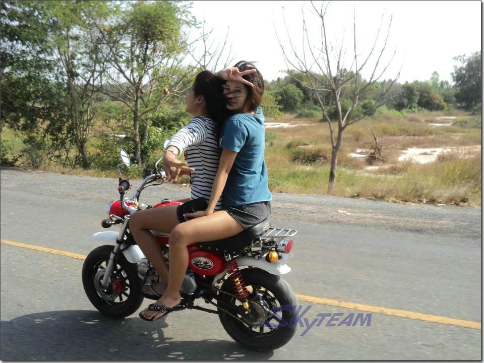Skyteam 125cc 4 Stroke Gorilla Motorcycle Eec Euro Iii