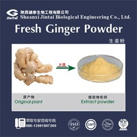 best quality strong smell ginger juice powder