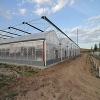 tunnel greenhouse poly tunnels cover for sale