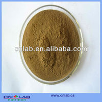 GMP/Haccp/ISO9001 Factory Provide 100% Natural Belladonna Extraction Powder in High Quality