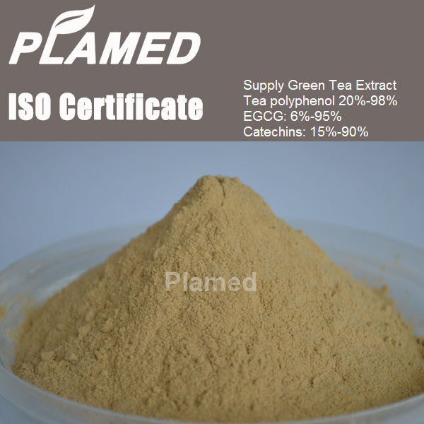 Super concentrated tea extract supplier,100% pure concentrated tea extract