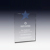 Nice engraved crystal star trophy plaque corporate anniversary award gift