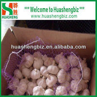 2016 Garlic Price in China