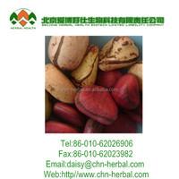 free sample kola nut extract powder in bulk,Wholesale kola nut extract powder