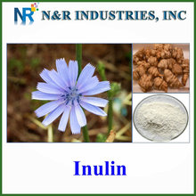 Prebiotics main source chicory root extract Inulin powder 90%