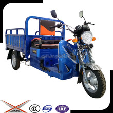 Cargo 110cc Trike, Small 3 Wheel Gasoline Tricycle Made in China