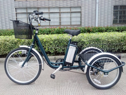 Updated euro electric tricycle 36v 250w with big cargo