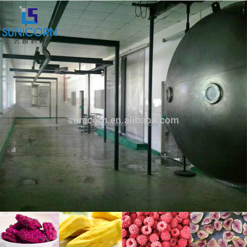 500kgs capacity frozen food vacuum freeze dryer machine vegetables drying freeze machine
