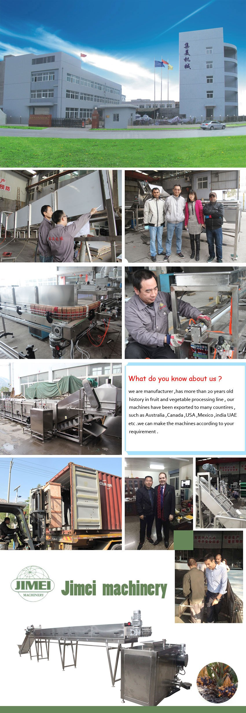 Trade assurance supplier fruit and vegetable continous Chain type blancher machine