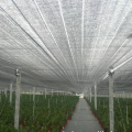 Agricultural Covering Net UV Plastic Shading Cloth Mesh