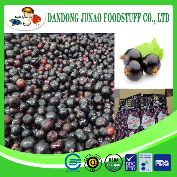 Manufacturer 100% Natural black currant extract