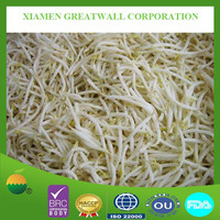 Automatic production frozen mung bean sprout