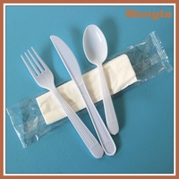 Biogradable kids eco-friendly PP material white disposable plastic cutlery