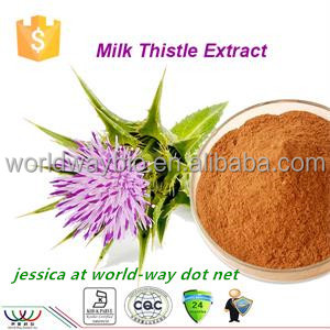 free sample ! China bulk protecting liver UV silymarin 80% milk thistle plant extract