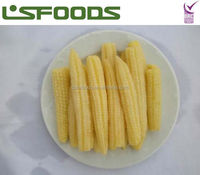 CHINA IQF FROZEN BABY CORN COBS