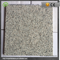 Wall decoration natural stone g603 for sals