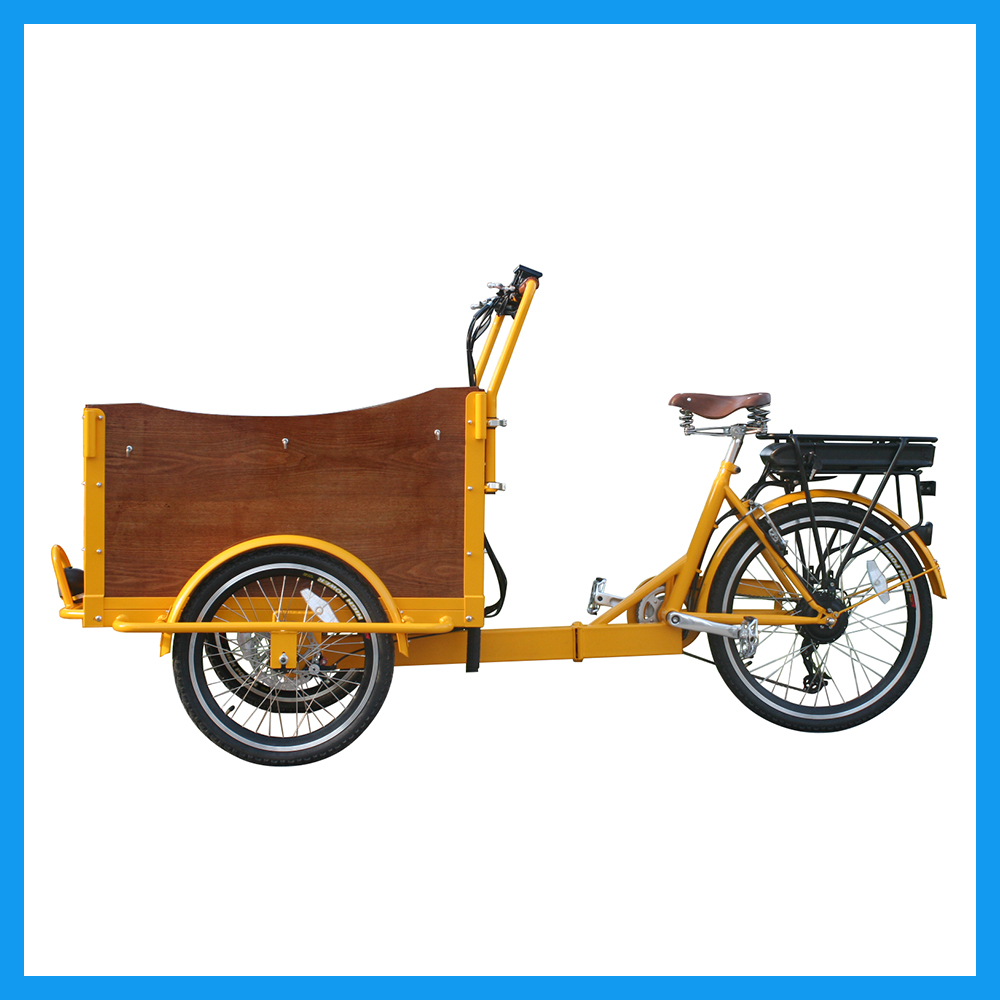 Front Loading Electric Cargo Trike with Storage Basket