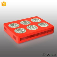 3 years warranty high power diy high lumen dimmable cob 600w apollo 6 led tomato grow light