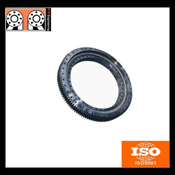 QW 800.25 crane slewing ring bearing