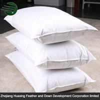 Top Grade Decorative Sleeping Down And Feather Pillow