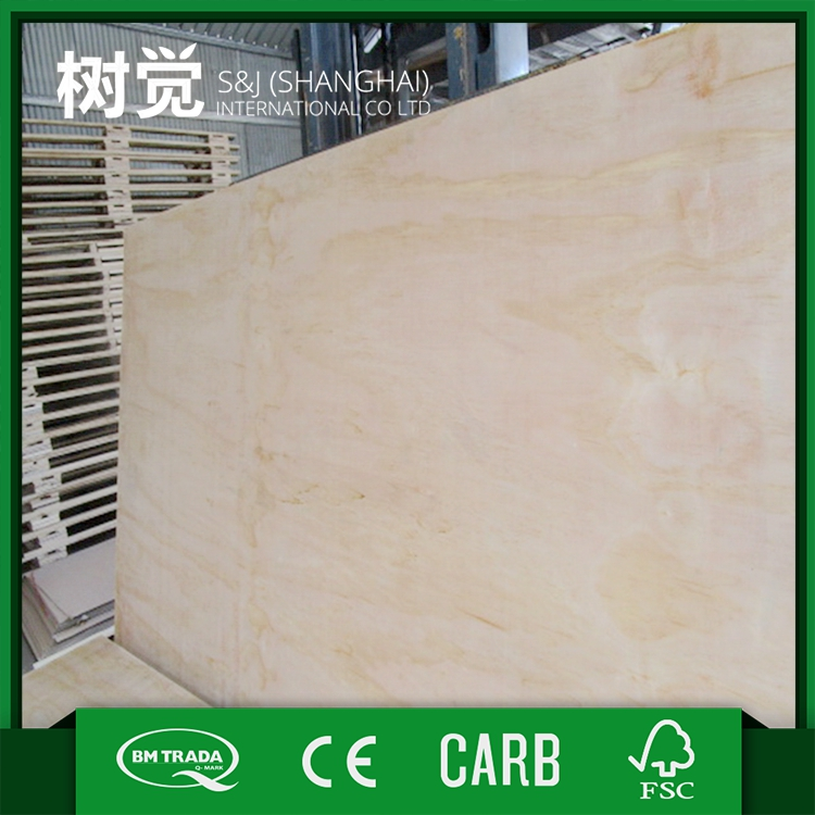 Long service life Promotion personalized radiata pine plywood board
