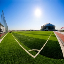 Chinese Soccer Artificial Grass Used Field Turf for Sale Price