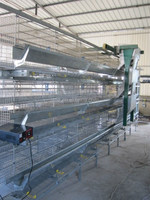 Best Selling Quail Cage For Sale in Quail Farm
